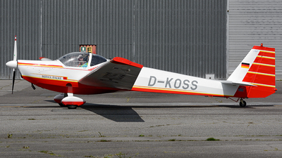 D-KOSS - Scheibe SF.25C Falke - Private