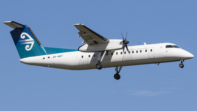 ZK-NEF - Bombardier Dash 8-Q311 - Air New Zealand Link (Air Nelson)