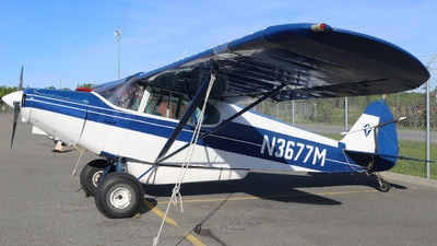 N3677M - Piper PA-12 Super Cruiser - Private