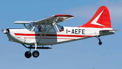 I-AEFE - Stinson L-5 Sentinel - Private