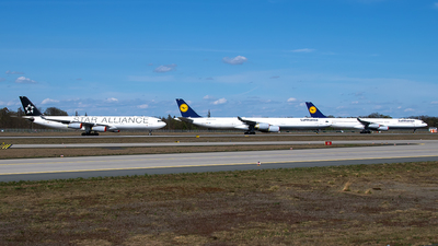 EDDF - Airport - Runway