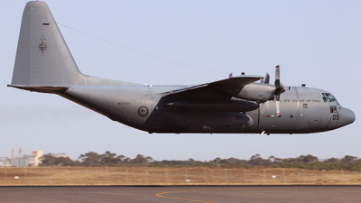 NZ7005 - Lockheed C-130H Hercules - New Zealand - Royal New Zealand Air Force (RNZAF)