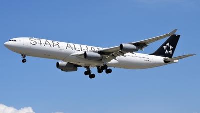 D-AIGP - Airbus A340-313X - Lufthansa CityLine