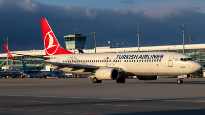 A picture of TCJHY - Boeing 7378F2 - Turkish Airlines - © Martin Tietz