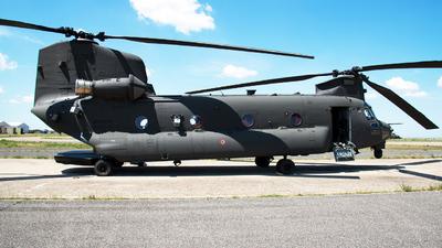 A picture of MM81779 - AgustaWestland ICH47F Chinook -  - © Aldo Bidini
