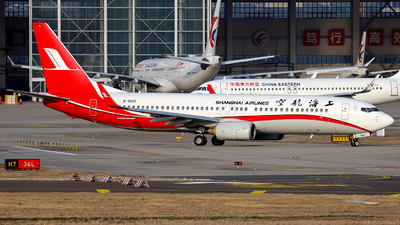 A picture of B5610 - Boeing 73786D - Shanghai Airlines - © Stefano R