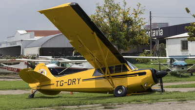 TG-DRY - Aviat A-1A Husky - Private