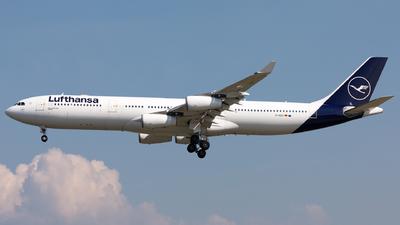 D-AIGY - Airbus A340-313X - Lufthansa