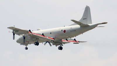 5097 - Lockheed P-3C Orion - Japan - Maritime Self Defence Force (JMSDF)