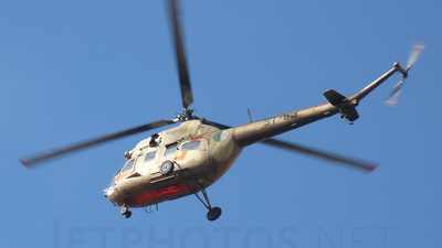 ST-63 - Mil Mi-2 Hoplite - Algeria - Air Force