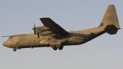 ZH867 - Lockheed Martin Hercules C.4 - United Kingdom - Royal Air Force (RAF)