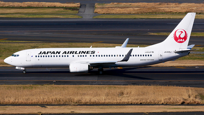 A picture of JA309J - Boeing 737846 - Japan Airlines - © Shogo Kawai