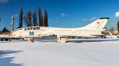 80 - Sukhoi Su-17 Fitter - Soviet Union - Air Force
