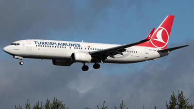 A picture of TCJVA - Boeing 7378F2 - Turkish Airlines - © PAUL LINK
