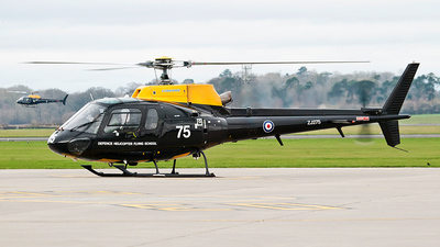 ZJ275 - Aérospatiale Squirrel HT.1 - United Kingdom - Royal Air Force (RAF)
