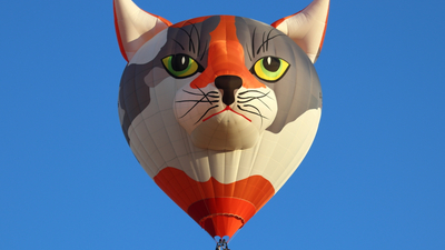 D-OYPS - Schroeder Fire Balloons Cat - Private