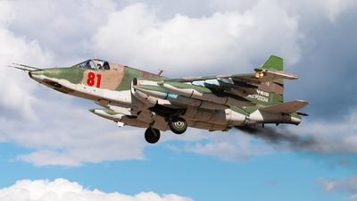 RF-95155 - Sukhoi Su-25BM Frogfoot - Russia - Air Force