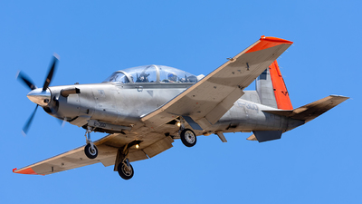 E-300 - Raytheon T-6C Texan II - Argentina - Air Force