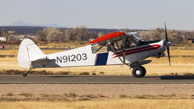 A picture of N91203 - Piper PA18150 Super Cub - [188109084] - © David Lee