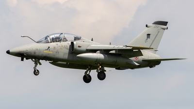 MM55051 - Alenia/Aermacchi/Embraer AMX-T - Italy - Air Force
