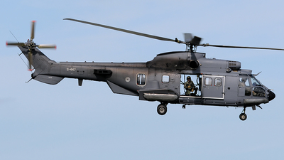 S-447 - Eurocopter AS 532UC Cougar - Netherlands - Royal Air Force