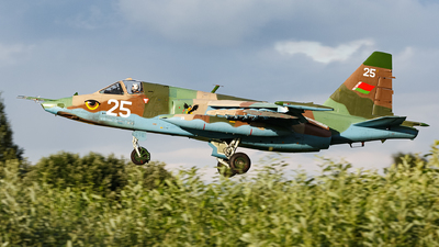 25 - Sukhoi Su-25 Frogfoot - Belarus - Air Force
