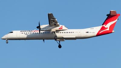 A picture of VHLQJ - De Havilland Canada Dash 8400 - QantasLink - © Josh Deitz
