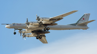 RF-94132 - Tupolev Tu-95 Bear - Russia - Air Force