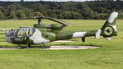 G-BZYD - Westland Gazelle AH.1 - Private