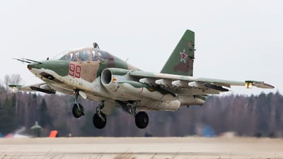 RF-91982 - Sukhoi Su-25UB Frogfoot - Russia - Air Force