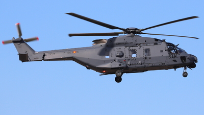 HD.29-16 - NH Industries NH-90TTH - Spain - Air Force