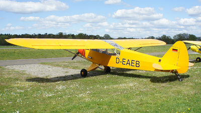 D-EAEB - Piper PA-18-95 Super Cub - Private