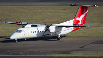 VH-TQZ - Bombardier Dash 8-Q315 - QantasLink