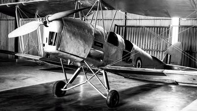 G-ANEJ - De Havilland DH-82A Tiger Moth - Private