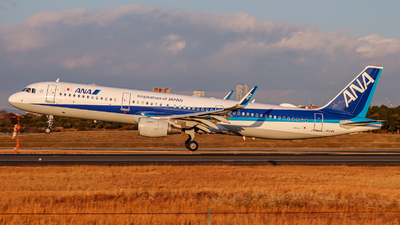 A picture of JA114A - Airbus A321211 - All Nippon Airways - © Kirifud_2003