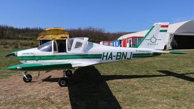HA-BNJ - Tecnam P2002JF Sierra - CAVOK Aviation Training