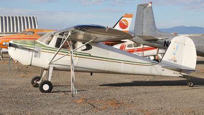N2178N - Cessna 140 - Private