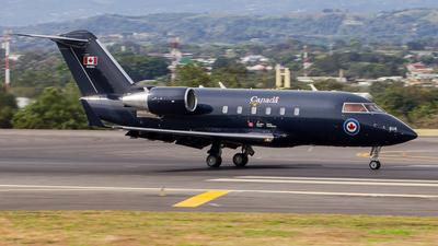 144614 - Canadair CC-144B Challenger - Canada - Royal Canadian Air Force (RCAF)