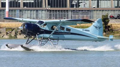 C-GOVC - De Havilland Canada DHC-2 Mk.I Beaver - Vancity Seaplanes