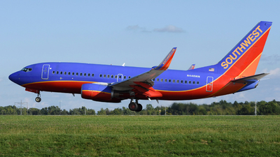 A picture of N446WN - Boeing 7377H4 - Southwest Airlines - © DJ Reed - OPShots Photo Team