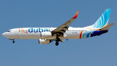 A picture of A6FGD - Boeing 7378KN - FlyDubai - © M. Azizul Islam