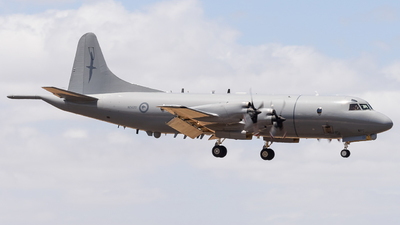 NZ4201 - Lockheed P-3K Orion - New Zealand - Royal New Zealand Air Force (RNZAF)