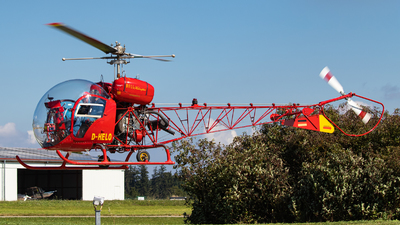 D-HELO - Bell 47G - Private