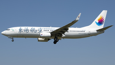 B-1533 - Boeing 737-83Z - Donghai Airlines