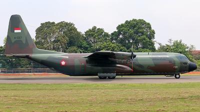 A-1317 - Lockheed C-130H Hercules - Indonesia - Air Force