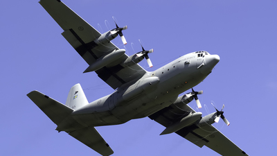 84006 - Lockheed Tp84 Hercules - Sweden - Air Force
