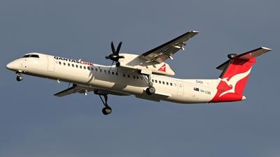 A picture of VHLQQ - De Havilland Canada Dash 8400 - QantasLink - © James Saunders