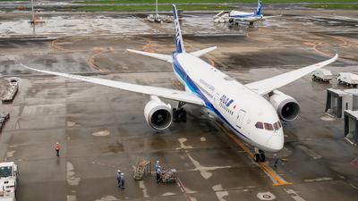 JA803A - Boeing 787-8 Dreamliner - All Nippon Airways (ANA)