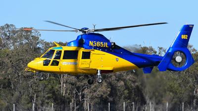 N365JL - Aérospatiale SA 365N2 Dauphin 2 - McDermott Aviation