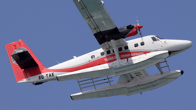 8Q-TAE - De Havilland Canada DHC-6-300 Twin Otter - Trans Maldivian Airways